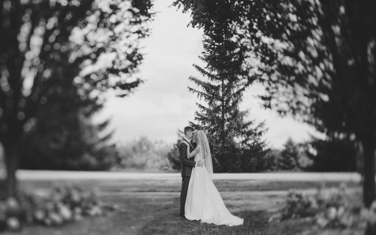 A Frankenmuth Wedding